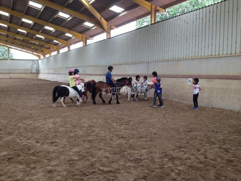 Niños jugando con poni