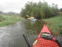 actividades en kayaks