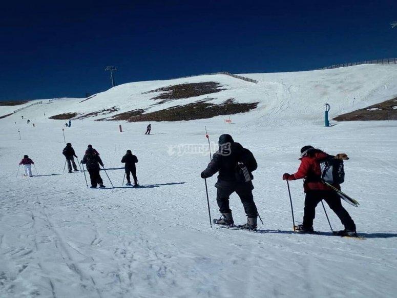 La expedición en los Pirineos