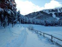 Raquetas de nieve en La Molina 2 horas iniciación