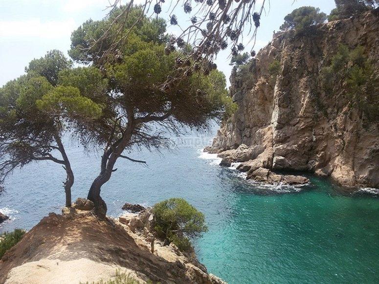 远足Cala del Crit