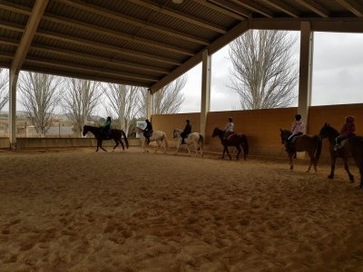 Bono 4 clases equitación Burgo de Ebro