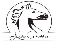 Centro de Equitación Aida Robles