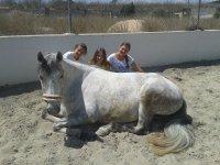 tres jovenes detras de un caballo blanco.jpg