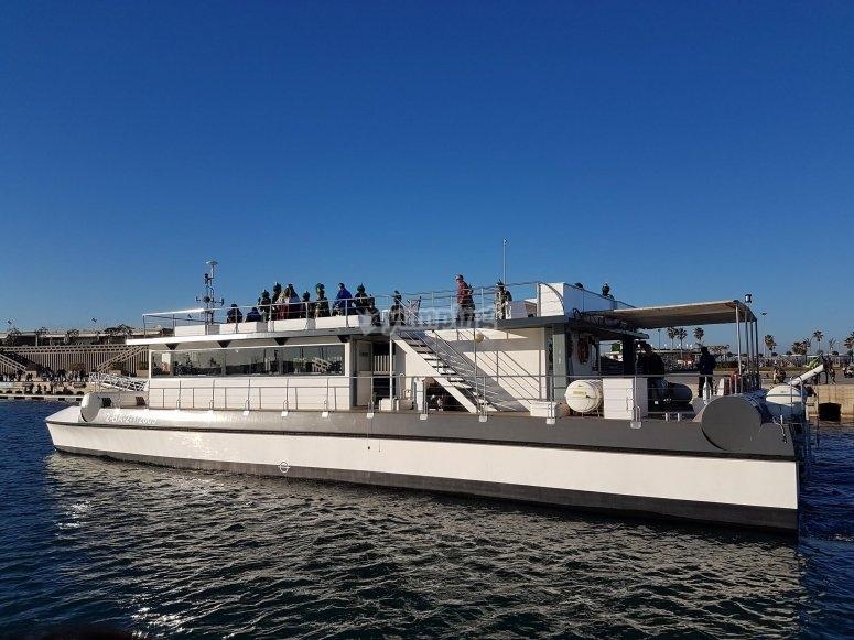 El catamarán en marcha