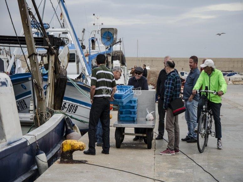 Pescadores faenando en Xàbia