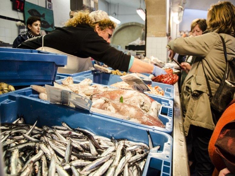 Tour en subasta de pescado