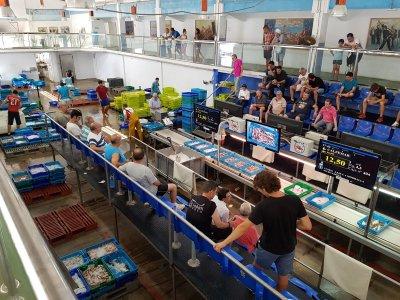 Visita guiada Puerto de Calpe 1 hora y 30 min
