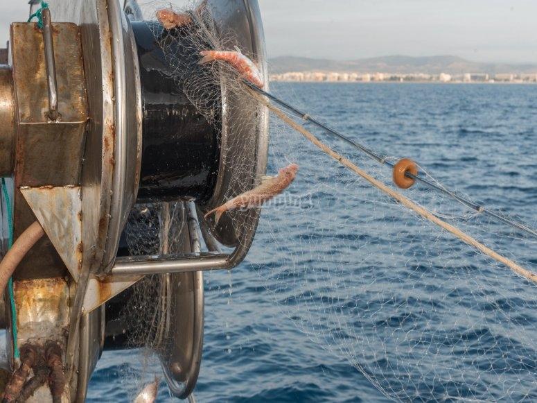 Gita di pesca tradizionale