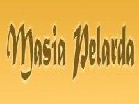 Masía Pelarda Orientación