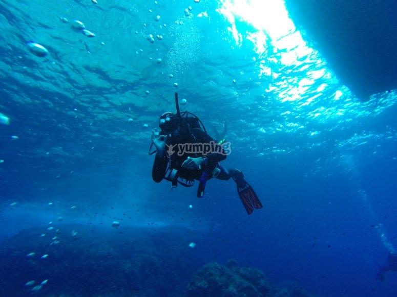 Alquiler equipo completo de buceo Fuerteventura