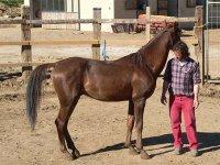 Con uno de nuestros caballos