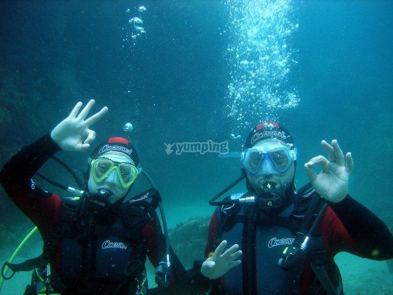 我们的商店潜水