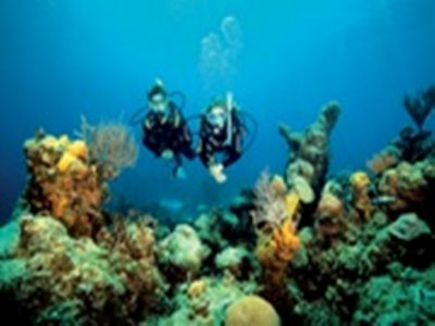 Diving baptism Discover Scuba Diving 3h Mar Menuda