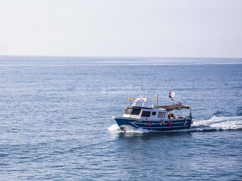 Barco pesquero tradicional