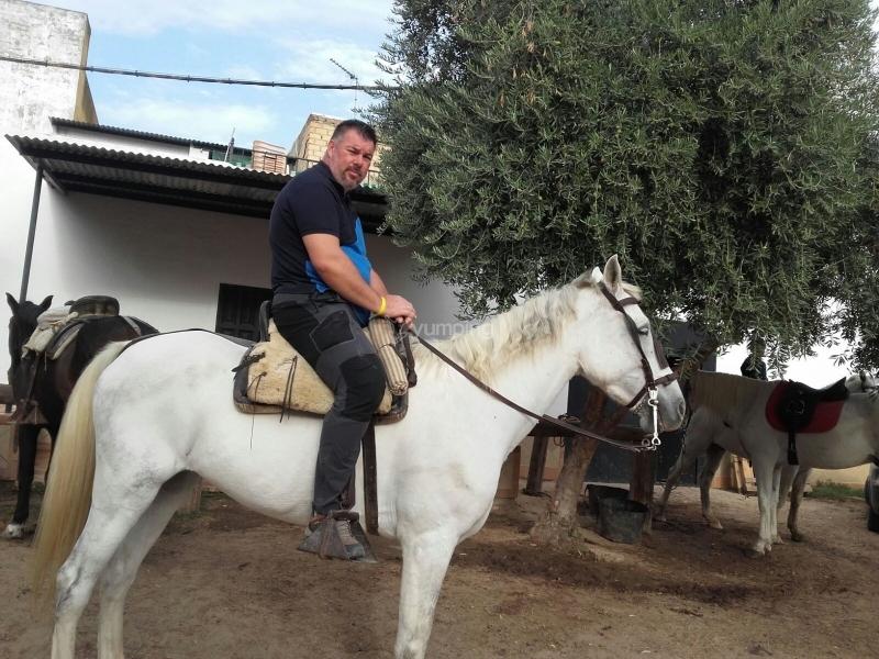 res_o-38874-rutas-a-caballo_de_gema-fernandez_15079758595801.jpg