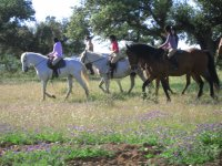 Adult birthday party horse riding