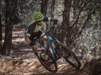 蹬自行车上坡骑自行车的人,同时通过森林太阳运行周期就可以得到