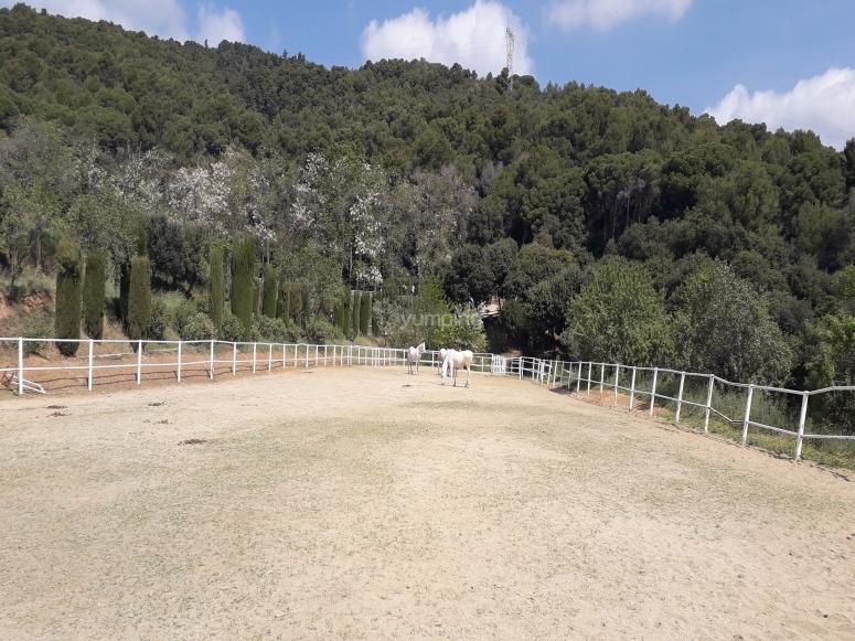 Centro hípico ubicado en la montaña