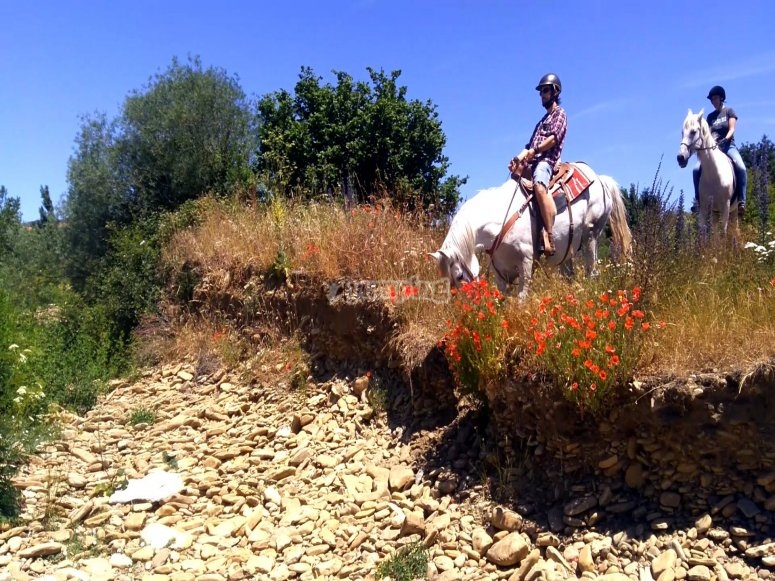 Horse riding route through Burgos