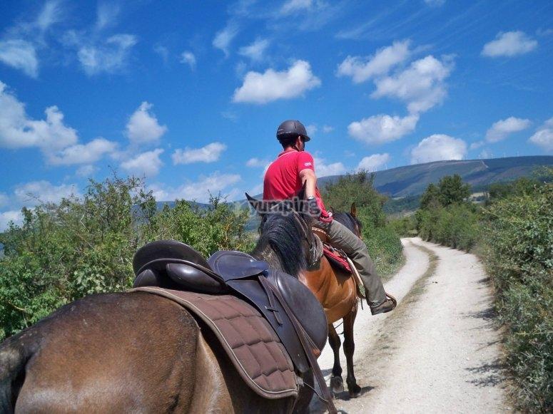 Paseo a caballo Las Merindades