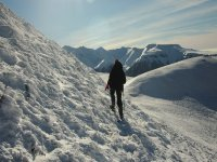Moving forward with snowshoes