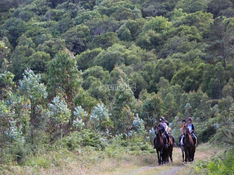 Salida a caballo en familia Ortigueira