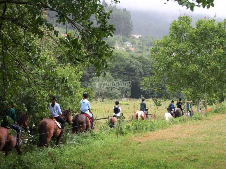 Excursión por montaña a caballo Ortigueira