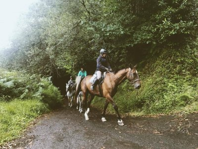 1-hour adult horse riding route in Ortigueira