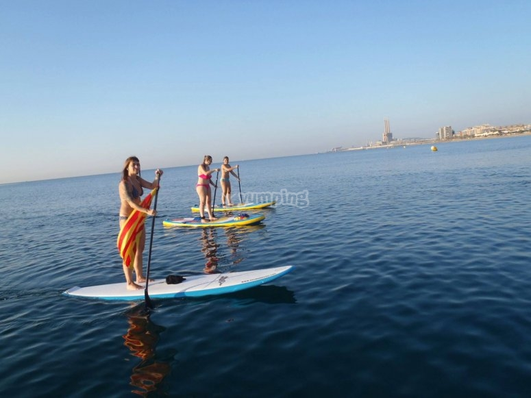 Paddle-surfing rental in Badalona