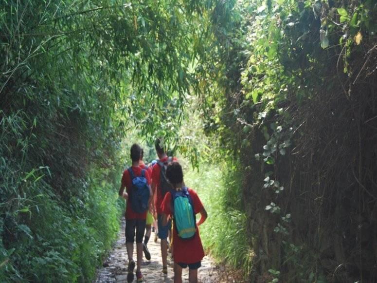 儿童夏季游览