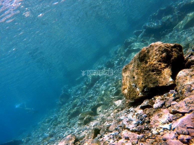 加那利群岛的沉浸等级入门