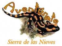 Aventúrate Sierra de las Nieves Escalada