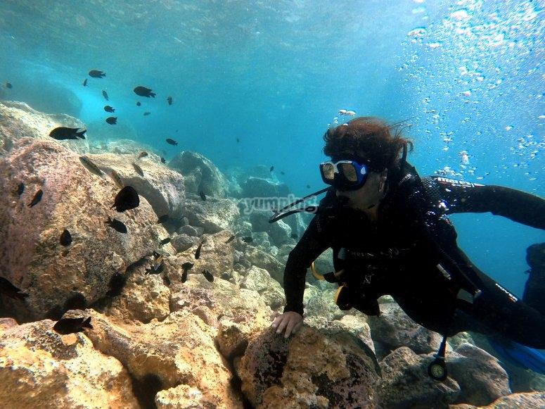 Fondo marino canario