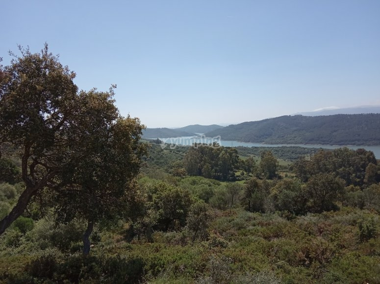 Preciosas vistas durante la ruta
