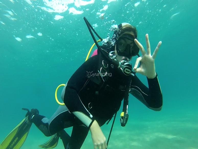 在温暖和透明的水中潜水