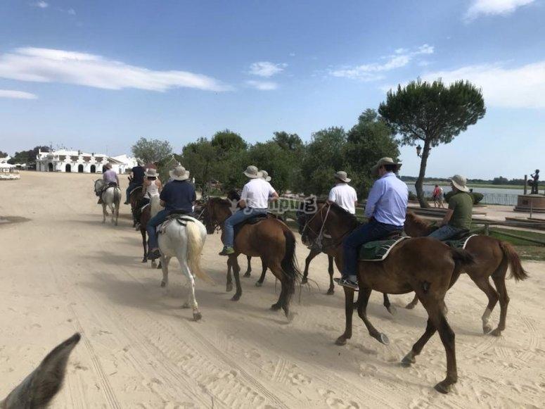 Clases de equitación grupales