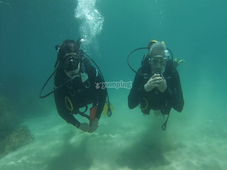 2星潜水课程FEDAS
