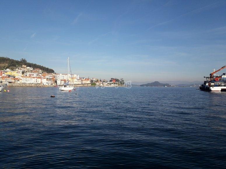 Avistamiento de cetáceos Galicia