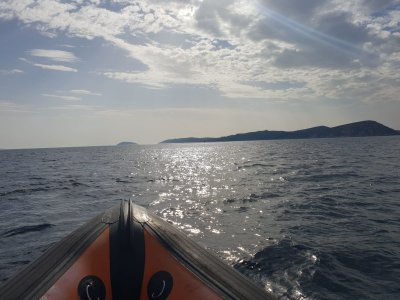 Visita guiada a la isla de Ons en lancha motora 6h