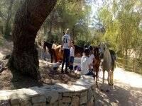 Parada en la ruta con caballos