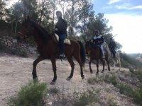 De ruta a caballo cerca de Valencia