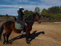 Ganando confianza a caballo