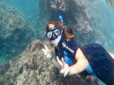 Ruta guiada snorkel acantilado Maro Cerro Gordo 2h