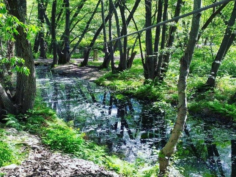 Entorno natural fantástico