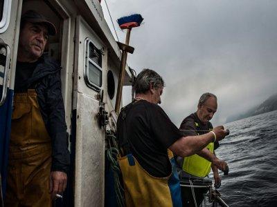 Oribay Tours Pesca