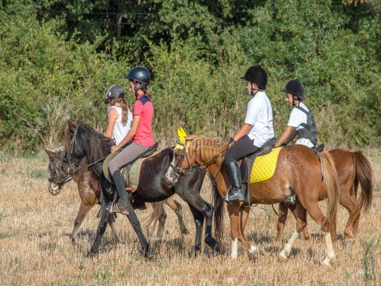 Ruta a caballo por la montaña de Palamós