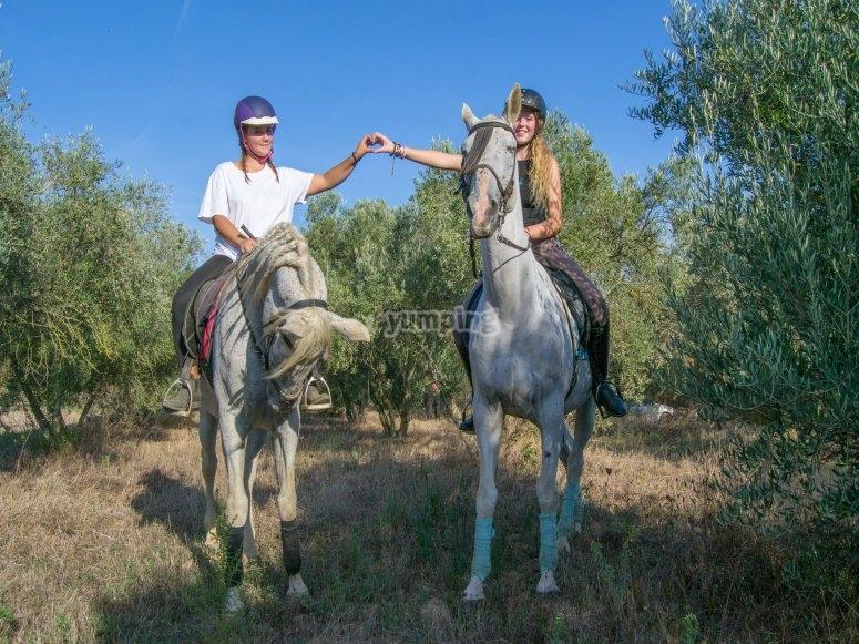 El amor a caballo