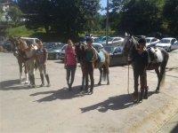 Students gallop exams