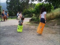 Sack races in the horse race